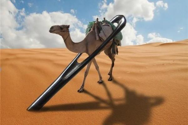 camelthrueyeofneedle